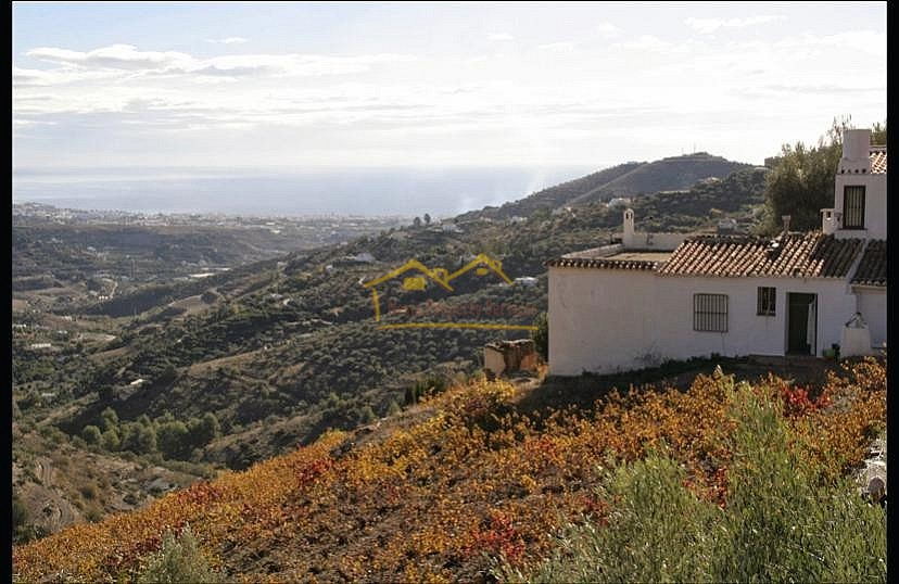 Picture of Finca/country House in Torrox